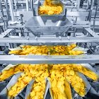 Tayto Crisp Factory - Industrial Photographer © David Cantwell Photography